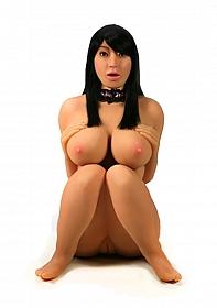 Penthouse Marica Hase 3D CyberSkin Reality Girl